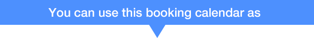WP Quick Booking  Manager Pro - 28