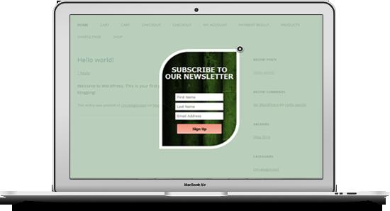 Langganan munculan khusus MailChimp untuk wordpress - 10