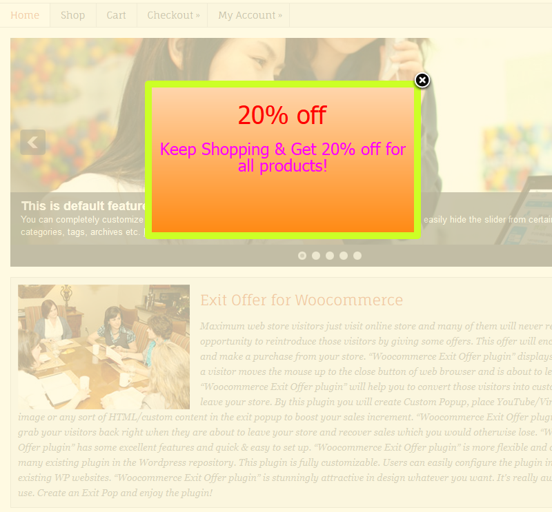 Exit Offer for WP eCommerce - 7